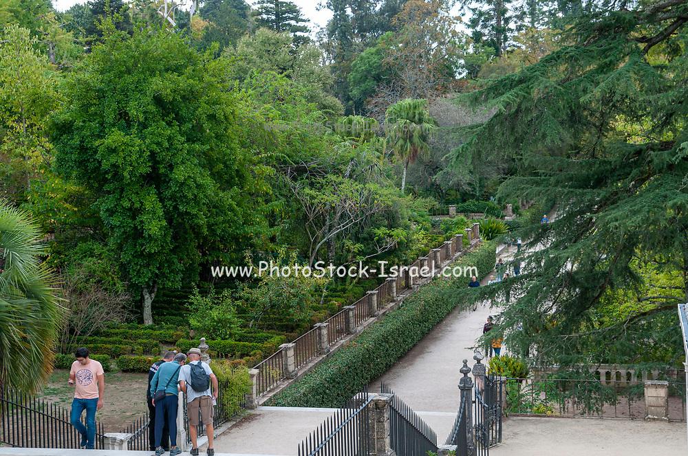 Botanical gardens, Coimbra, Portugal