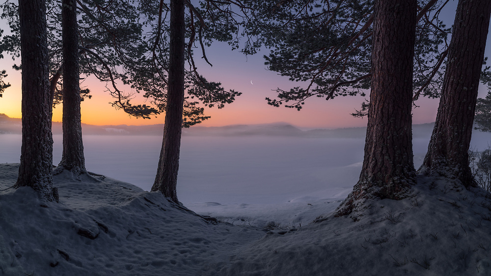 Malvik, Norway. February 2020.
