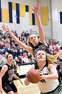 Elyria Catholic vs. Wellington girls basketball on Feb. 28, 2018. Images © David Richard and may not be copied, posted, published or printed without permission.