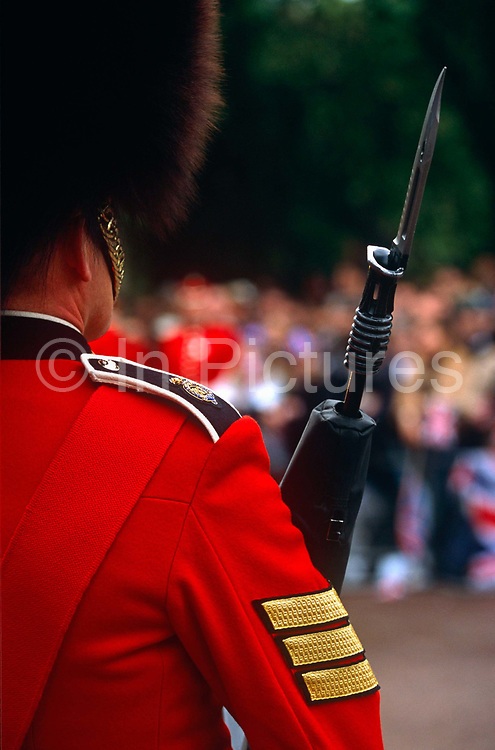 A guardsman of an unknown regiment, stands on ceremonial duty in the Mall during celebrations of the Queen's official Golden Jubilee in June 2002. The soldier in resplendent red tunic and the controversial bearskin is an iconic emblem of Britain's armed forces during official events. But the officer may be a Grenadier or a Welsh Guard who share similar uniforms and perform similar duties in London. We see over his shoulder on which his regimental insignia is and also where the bayonet of his weapon is fixed and dangerously sharp. He is a sergeant major and therefore responsible for other soldiers' rank and files. The Grenadier Guards (GREN GDS) is the most senior regiment of the Guards Division of the British Army, and, as such, is the most senior regiment of infantry. The Grenadier Guards celebrated its 350th anniversary in 2006.