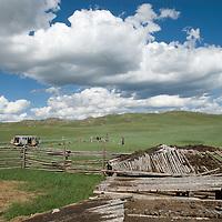 MONGOLIA. Smithsonian Museum archaeology team studies 2700+ year-old,  khirigsur burial mound at site beside sheep corrals near Lake Erkhel & Muren, Mongolia.