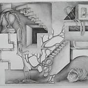 "19"" x 24"",<br /> Graphite on paper,<br /> 2009"