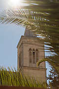 Low angle view of church tower between palm tree leaves, Pisco Elqui, Elqui Valley, Chile
