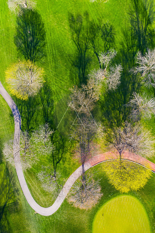 Aerial view of a treetops in early spring creating an abstract looking perspective at the Naperville Country Club in Napervile, IL - USA
