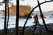 A short walk takes you through coastal forest to view sea stacks, surf, and driftwood on pebbles and sand at Ruby Beach, in Olympic National Park, Washington, USA.