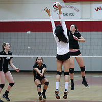 (Photograph by Bill Gerth for SVCN) Westmont #7 Melanie Broback looks to score vs Piedmont Hills in a BVAL Girls Volleyball Game at Westmont High School, Campbell CA on 9/29/16.  (Piedmont Hills wins 3-0, 25-13, 25-14, 25-20)