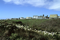 Viewing Main Street from the Headlands, Mendocino, California