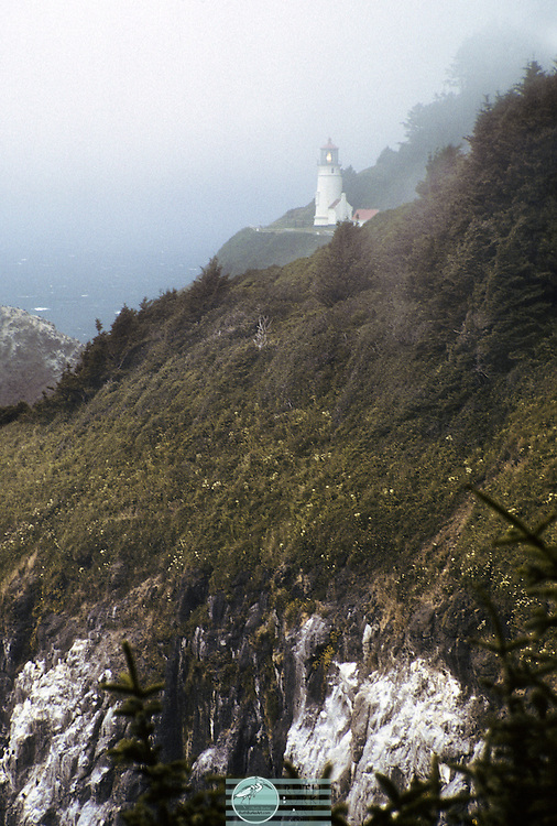 Heceta Head Lighthouse On Hill