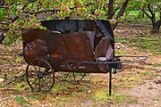 a wheel barrow made from an old oil barrel used for burning twigs and branches in the vineyard when pruning. Domaine Gilles Robin, Les Chassis, Mercurol, Drome, Drôme, France, Europe