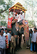 Indian men attending festival with garlands and traditional decorated elephant led by mahout rider.