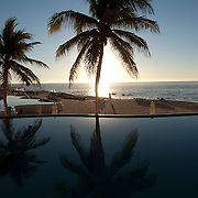 Oceanside palm tree reflecting in a small swimming pool. Mexico.