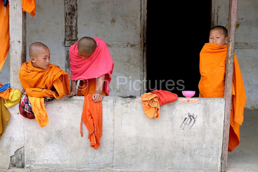 Young Buddhist monks with shaven heads and wearing orange and pink robes at the temple in the Doi ethnic minority village of Ban Muang, Luang Namtha, Lao PDR. Ban Muang is the only Doi village in Lao PDR, the majority of Doi people live in Myanmar.