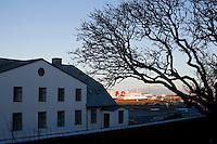 The Prime Ministers Office in Reykjavík City Center. Stjórnarráðið og tré.