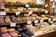 Italian artisan cheese shop, Del Bottega Naturista in Corso Rossellino including Pecorino Stagionato aged cheese in Pienza, Tuscany, Italy