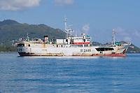 Japanese Tuna, Boat, Seychelles