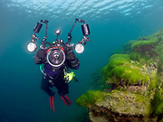 KISS Spirit rebreather diver with Aquatica camera housing, on the wall with green algae at Dutch Springs, Scuba Diving Resort in Pennsylvania