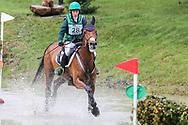 Woodcourt Garrison ridden by Sarah Ennis in the Equi-Trek CCI-L4* Cross Country during the Bramham International Horse Trials 2019 at Bramham Park, Bramham, United Kingdom on 8 June 2019.