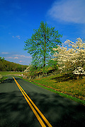 Image of the Blue Ridge Parkway in the spring, North Carolina and Virginia, east coast by Randy Wells