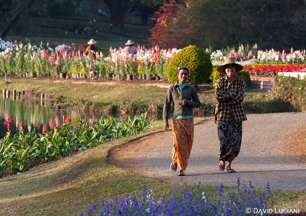 With about 345 acres, the  Pyin U Lwin National Botanical Garden is certainly the most beautiful garden in Myanmar. The garden offers you an nice opportunity to take a break before going back to the city of  Pyin U Lwin also known as Maymyo.