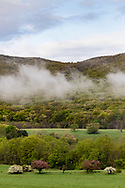 Town of Cornwall, New York - Fog moves across the side of Schunnemunk Mountain on a spring morning on May 6, 2019.