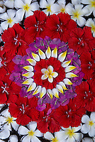 Indonesie. Bali. Motif floral pour offrandes. // Indonesia. Bali. Flowers for offering.