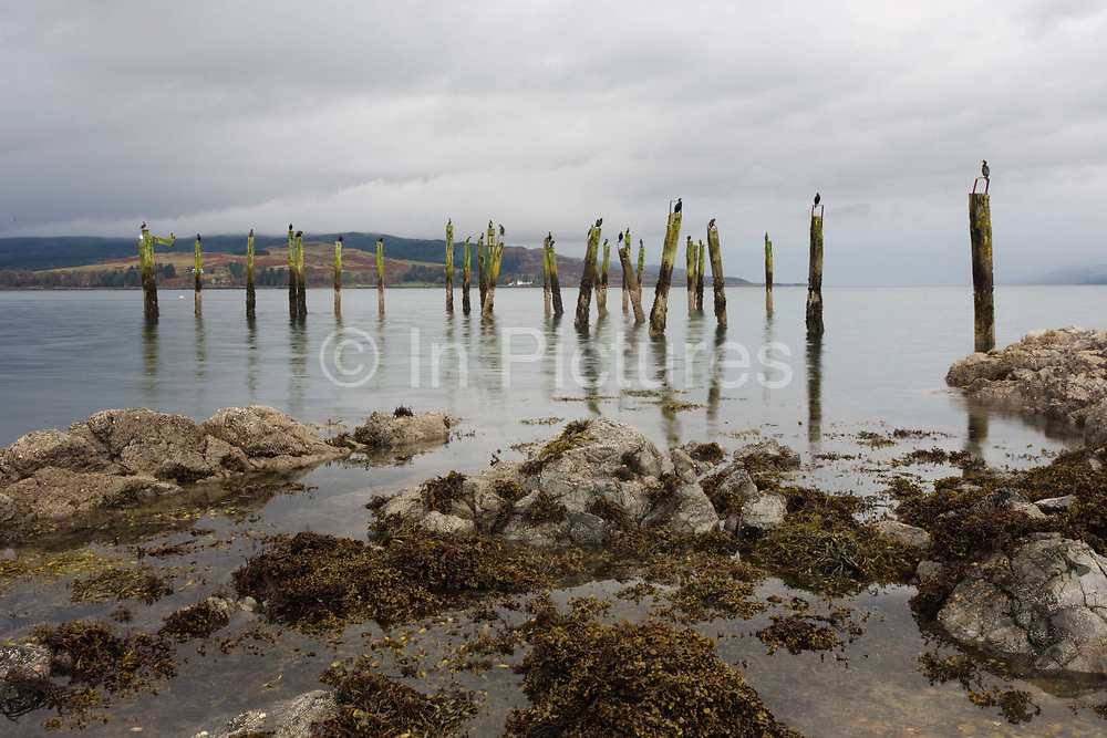 Disused wooden piles at Salen Pier, Salen, Isle of Mull, Scotland. The mailboat service from Oban to Mull traditionally called at Salen pier en route to Tobermory and many people still have fond memories of the Lochinvar.  From 1964 the new ferries required bigger piers and Craignure was established as the main ferry terminus. Salen (Scottish Gaelic: An t-Sàilean) is a settlement on the Isle of Mull, Scotland. It is on the east coast of the island, on the Sound of Mull, approximately halfway between Craignure and Tobermory. The full name of the settlement is 'Sàilean Dubh Chaluim Chille' (the black little bay of St Columba).