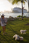 One of Miami Beach's many dog owners at a new years eve 'walkies' meeting at South Pointe Park Miami Beach. In the background a very big cruise ship leaves Miami Port