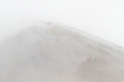 Crowds of hikers in whiteout conditions on the Tongariro Crossing, in Tongariro National Park, New Zealand.