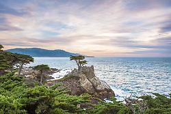 Lone Cypress at sunset.  Carmel California