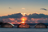 Warwick, New York - A colorful sunset behind snow-covered Black Dirt fields on Jan. 30, 2015.