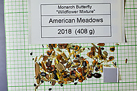 Monarch Butterfly Wildflower Mix seeds from American Meadows. Image taken with a Fuji X-H1 camera and 80 mm f/2.8 macro lens + 1.4x teleconverter