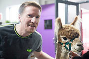 30/09/2019 Repro free:Chris Loughnane PiPit with Ear to the Ground , An Alpaca from Farmyard in your School yard who paid a visit to the Portershed. Photo:Andrew Downes, xposure.ie