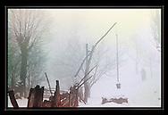 "Fogs of Winter, Transylvania<br /> <br /> Digital Print 24x36"""