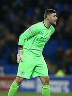 David Marshall during the Sky Bet Championship match between Cardiff City and Brighton and Hove Albion at the Cardiff City Stadium, Cardiff, Wales on 10 February 2015.