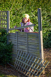 Inspecting a storm damaged fence panel