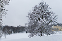 instant walkers cross the pristine whiteness of the grounds of Kenwood House as people and their pets enjoy the three inches of snow on Hampstead Heath in North London. Hampstead, London, February 01 2019.