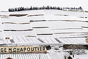 The Chante Alouette vineyard and signs with Paul Jaboulet Aine and M Chapoutier. The Hermitage vineyards on the hill behind the city Tain-l'Hermitage, on the steep sloping hill, stone terraced. Sometimes spelled Ermitage. Vineyards under snow in seasonably exceptional weather in April 2005. Tain l'Hermitage, Drome, Drôme, France, Europe