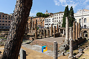The ruins of Largo di Torre Argentina in Rome, Italy.