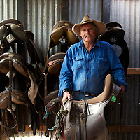 Bruce McCormack, one of Victoria's last mountain cattle men, prepares to saddle up before the annual muster.
