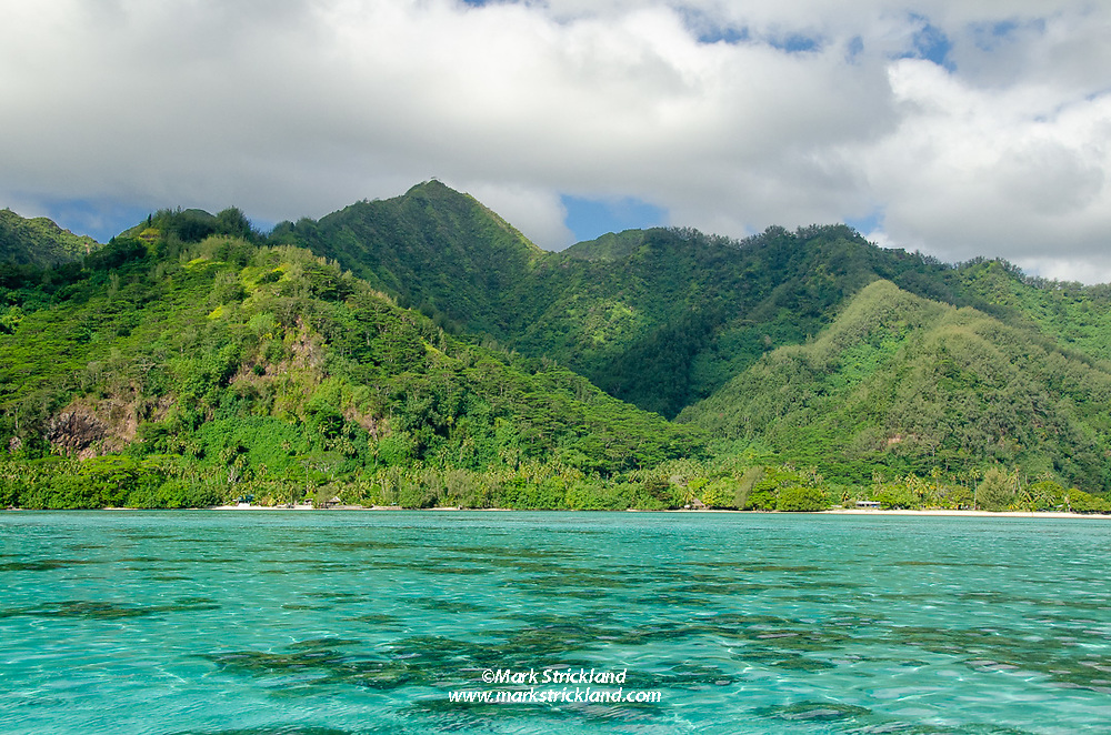 Moorea's southside, as seen from the shallow lagoon. Moorea, French Polynesia