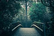 500px Photo ID: 4116943 - A creek trail bridge in Belmont, CA.