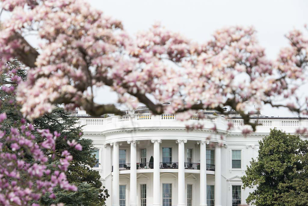 (From the press release) Today, the First Lady will share a special #GimmeFive garden challenge as part the Let's Move! fifth anniversary challenge encouraging Americans to #GimmeFive things they are doing to lead healthier lives. The First Lady and the students will plant five vegetables: spinach, bok choy, broccoli, lettuce plants, and radish seeds, and will challenge the kids at the planting along with other kids, schools, and communities across the country to plant these five vegetables in their own gardens. Each student participating in the planting will receive five of their own plants and seeds to take home to start their garden.