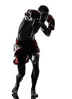 one  man exercising thai boxing in silhouette studio on white background