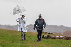 © Licensed to London News Pictures. 1/411/2020. London, UK. Walkers in Richmond Park, South West London brave the wind and the rain as the Met Office issue a yellow weather warning for heavy rain in the South East this weekend with wind speeds in excess of 50mph. Photo credit: Alex Lentati/LNP