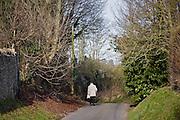 Elderly man walks alone in country village lane, Shipton Under Wychwood, The Cotswolds, United Kingdom
