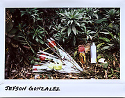 Flowers and a candle are placed in a bush for Jeyson Gonzalez, 15-year-old, in an alley near the 4400 block of Maplewood Avenue in Chicago in this photo taken October 28, 2017. Gonzalez was shot wile walking in the alley with another boy, who was also seriously wounded in the incident on October 26, 2017. Two teenagers have been charged with his murder.