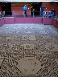 Dionysus mosaic at the Roman-Germanic Museum in Cologne Germany