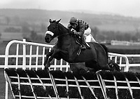 Punchestown Racecourse, Kildare, 03/01/1996 (Part of the Independent Newspapers Ireland/NLI Cillection).