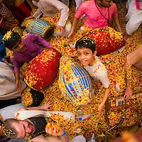 Flower Festival - Mumbai