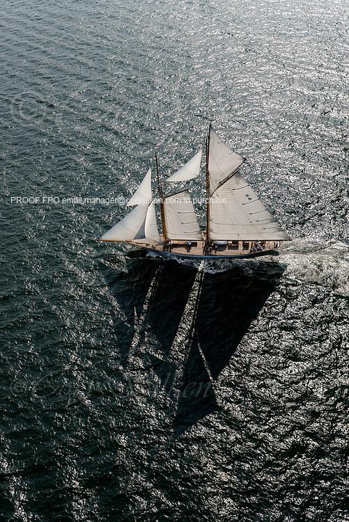 Eleonora sailing in the Panerai Newport Classic Yacht Regatta.